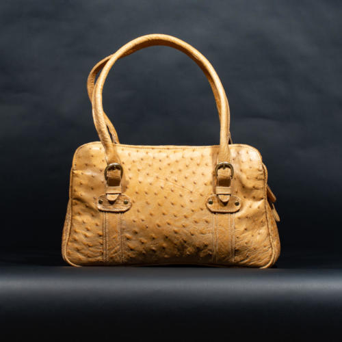 Handbag-Ostrich
