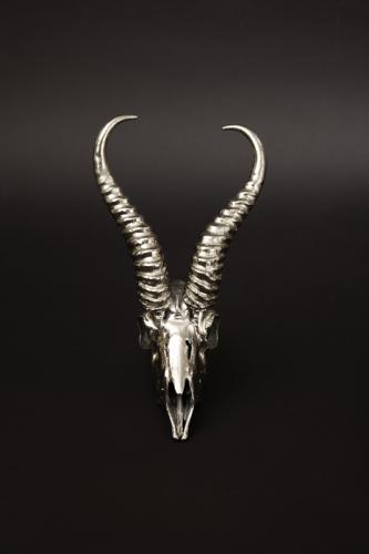 Chrome plates Springbuck skull