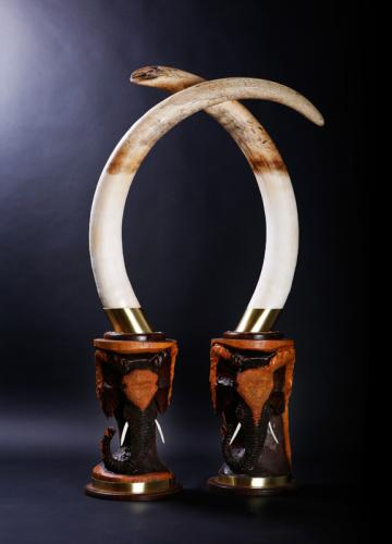 Elephant-Tusks-Carved-Bases