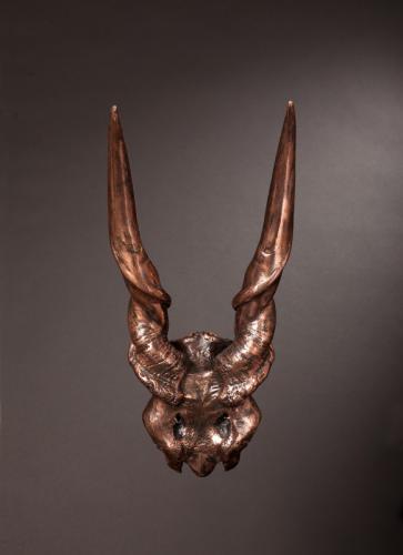 Bronze-Eland-skull