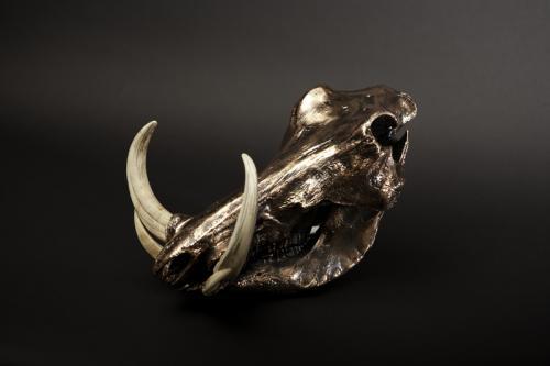 Warthog Copper desk skull
