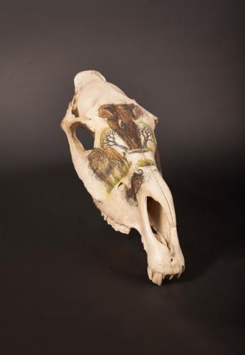 Big-5-Etched-skull