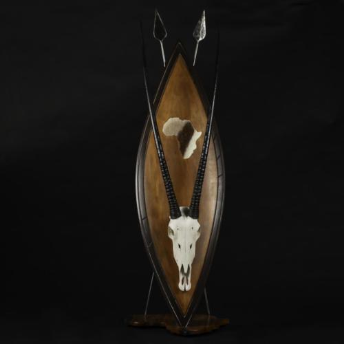 Gemsbok-Skull-Zulu