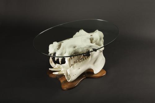 Hippo skull glass table