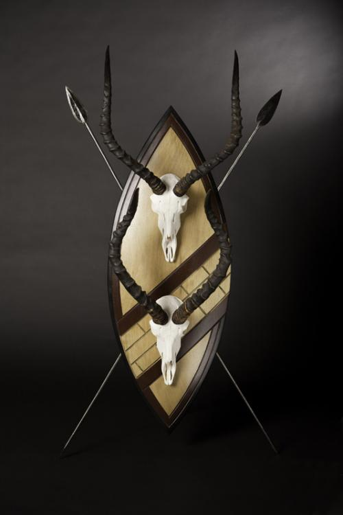 Impala skulls on Zulu Shiled