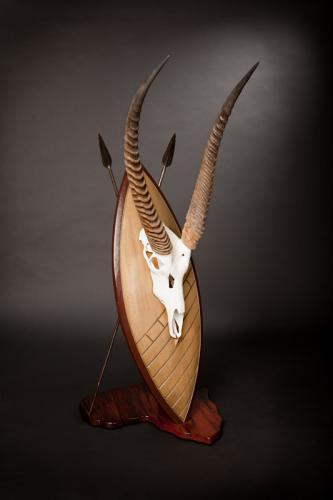 Waterbuck Skull on Shield