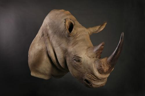 Rhino Shoulder Mount