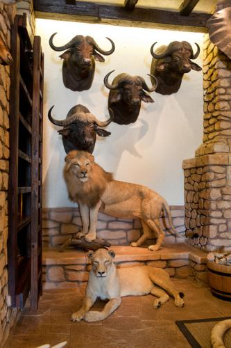 Buffalo shoulder mounts